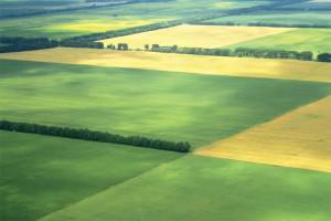 Как оформить пай земли в собственность в 2020 году: особенности процедуры