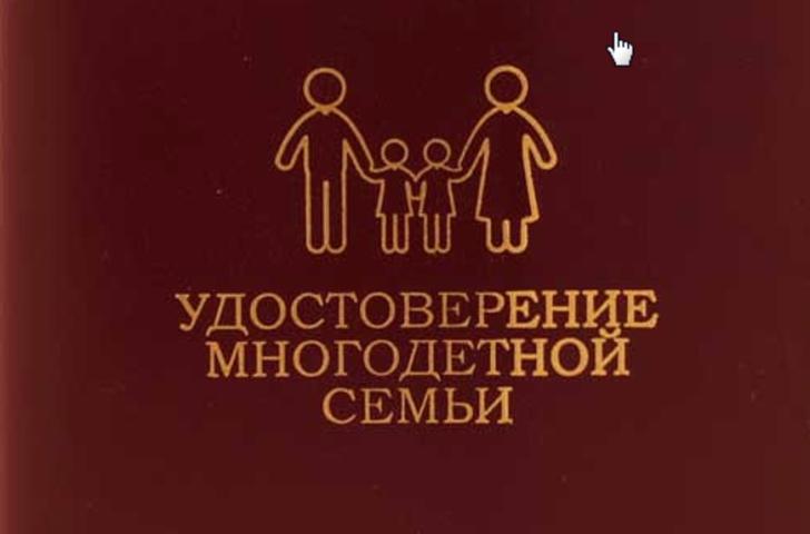 Право на государственную поддержку законы о многодетных семьях и их основные положения