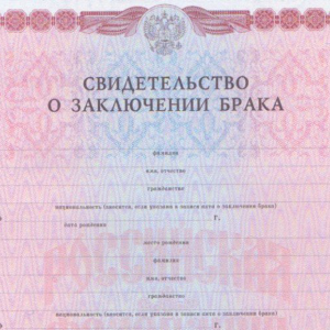 Образец заявления о задолженности по алиментам: как взыскать долги через суд